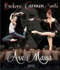 Ave Maya 2015, Moscow SD (DVD)
